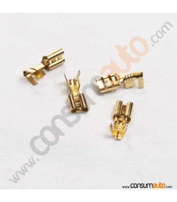 100 Terminales FastOn Hembra Desnudo 4.8mm